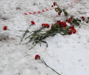 Обвиняемого в жестоком убийстве Воронежской учительницы признали вменяемым