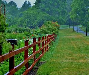 На первой неделе августа воронежцев ждут жара, дожди и грозы