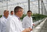 Владимир Нетёсов: По итогам урожая-2021 регион будет обеспечен всем необходимым