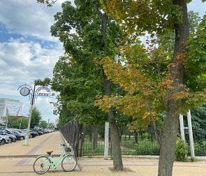 Бринкманский сад: он мог бы стать изюминкой города, но его запустили