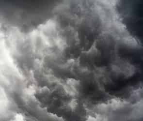 Спасатели предупредили жителей Воронежской области о сильном ветре