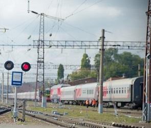В Воронежский заповедник запустили дополнительный экскурсионный поезд