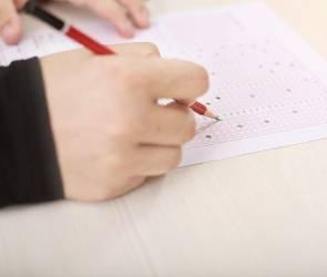 Воронежская стобалльница поделилась мнением о создании карты с результатами ЕГЭ