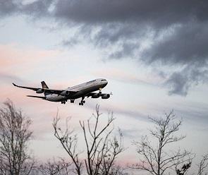 Воронежцы вновь смогут добраться до Бишкека на прямых рейсах
