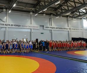 В Воронеже построят спортивный комплекс в честь известного борца