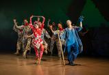 В Воронеж на «Маршак» привезут спектакли из Франции и Румынии