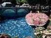 Фестиваль «Город-сад» - 2021 196322