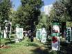 Фестиваль «Город-сад» - 2021 196325