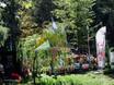 Фестиваль «Город-сад» - 2021 196328