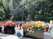 Фестиваль «Город-сад» - 2021 196337