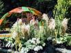 Фестиваль «Город-сад» - 2021 196348