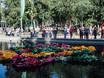 Фестиваль «Город-сад» - 2021 196354