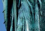Красота вместо ужаса: появились фото новой нововоронежской «Аленки»
