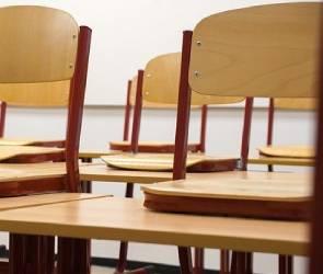 Из-за роста ОРВИ в Воронеже учащихся 55 классов отправили на дистанционку