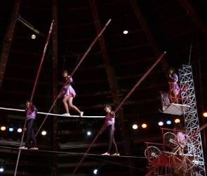 Воронежский цирк за 1,7 млрд рублей реконструируют москвичи