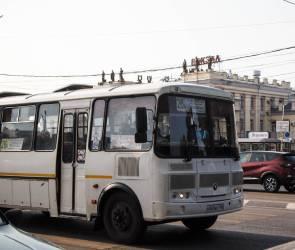 Два популярных маршрута исчезнут  с улиц Воронежа с 1 октября