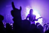 Объявлены новые даты рок-фестиваля «Чернозем»
