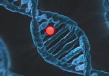 Самолечение онкологии и услуги «целителей» могут привести к печальному итогу